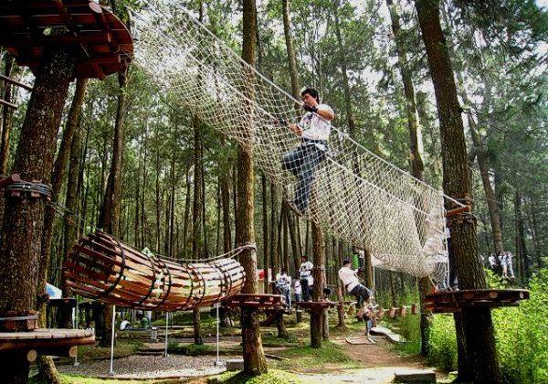 outbound di wisata alam kopeng treetop